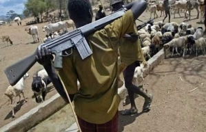 Fulani herdsmen raping our Wives, children – Anambra communities cry out